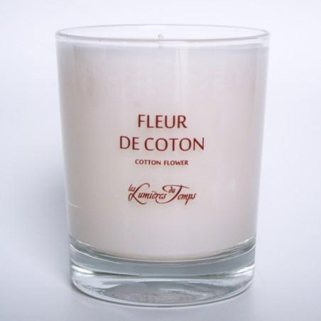 Baumwollblume Kerze Pflanze